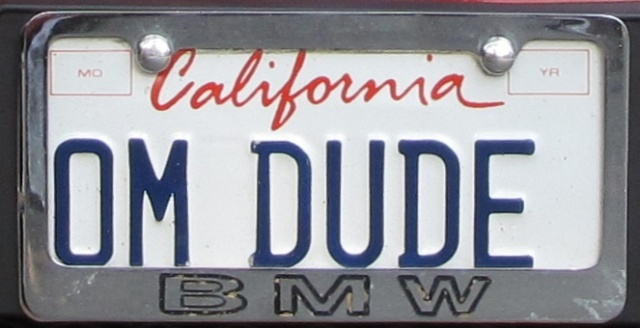 My personalized plate, OM DUDE